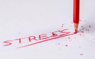 Understanding stress in the body