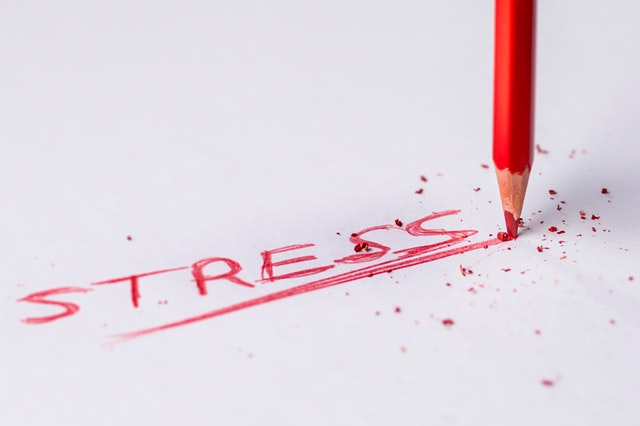 Understanding stress in the body